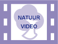 Logo YouTube Natuurvideo's
